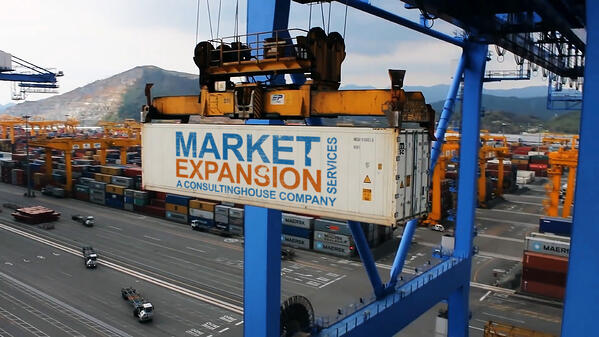 Market Expansion Services for Germany