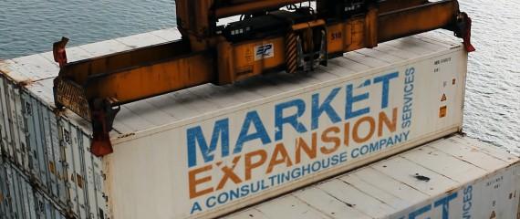 Menu-Banner-Market-Expansion-Services-1